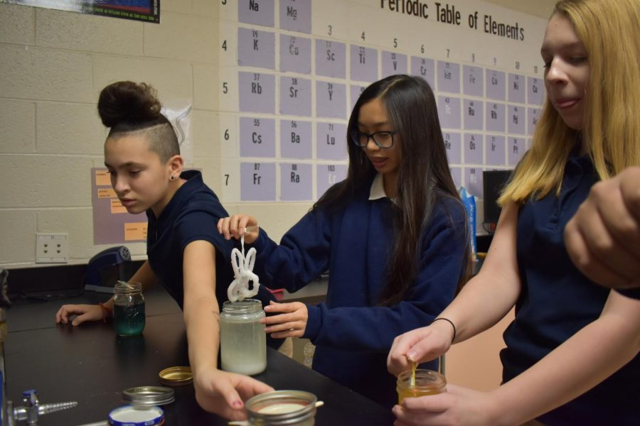 Illianni Rusi and other students in Ms. Russell's eighth grade science classes remove their crystals after days of growing in water.