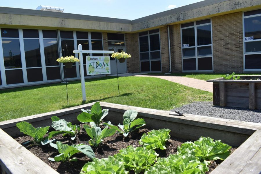 The Bernzomatic Garden is highlighted with plants grown through Environmental STEM classes. This highlights a school-wide effort to improve healthy eating through multiple programs.
